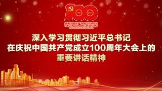 深入学习贯彻习近平总书记在庆祝中国共产党成立100周年大会上的重要讲话精神