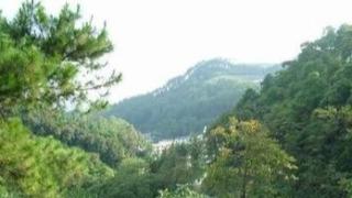 第五批全国林草科普基地落户三门江国家森林公园